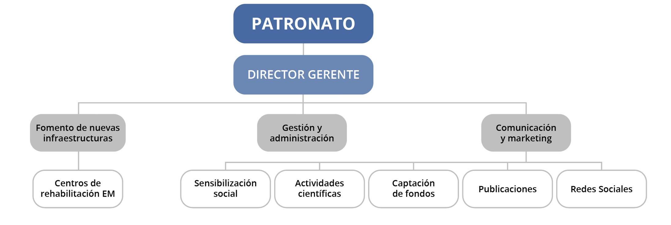 organigrama-fundacion