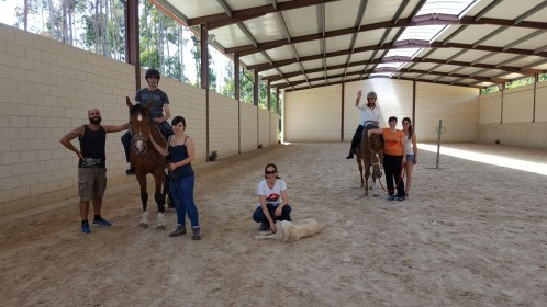 Equitación paraecuestre